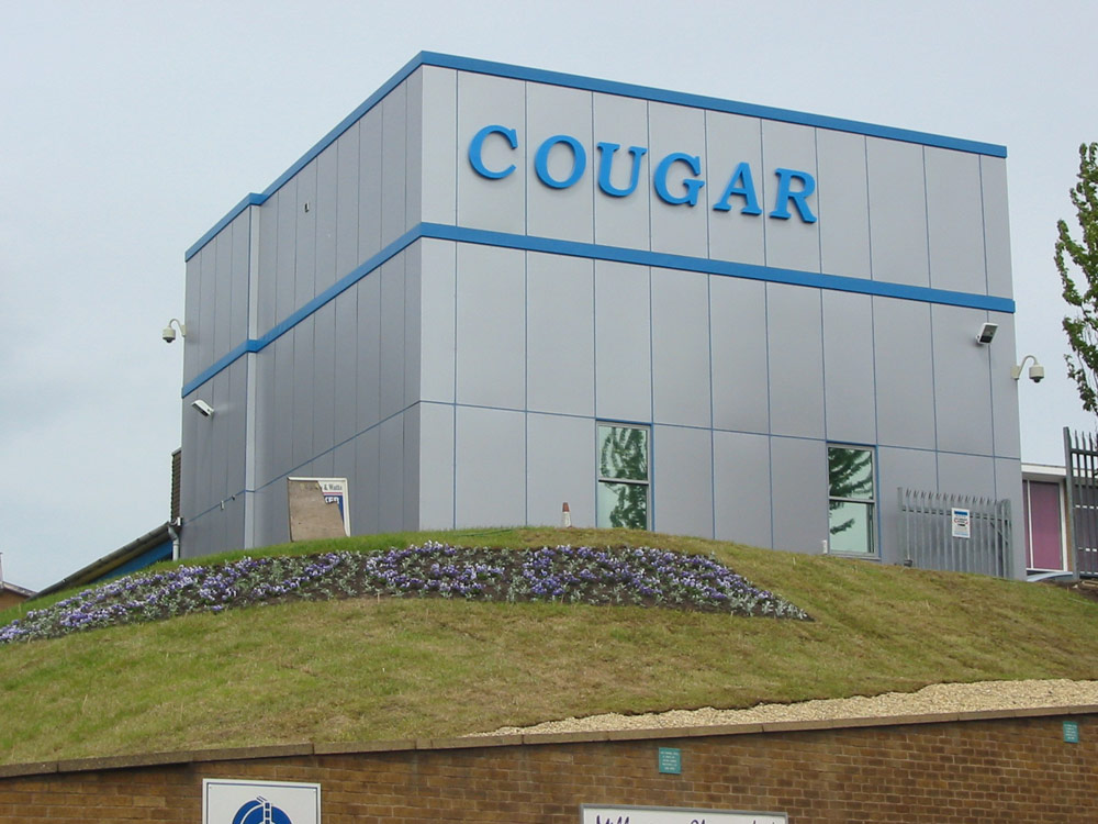 Cougar Monitoring Outside Building